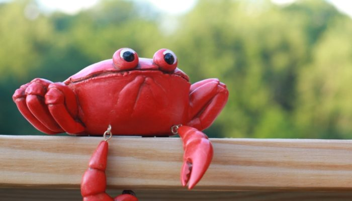 Separation Anxiety & The Tale of Mr. Crab